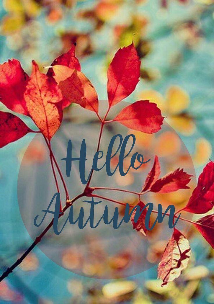 953001185437a814dc5acde8fda9c38b--hello-autumn-autumn-fall