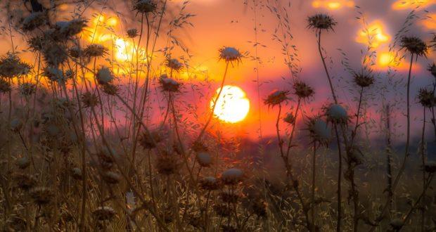 Christian-Mueller-cropped-sunset-620x330